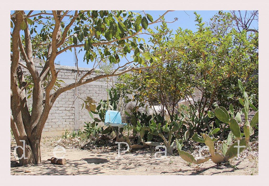 Historias-de-viviendas-mexicanas-dos.jpg
